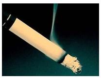 烟草类型项目案例